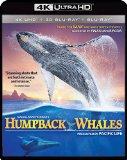 IMAX: Humpback Whales - 4K Ultra HD